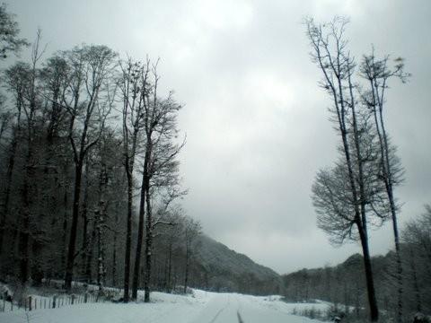 carretera austral2